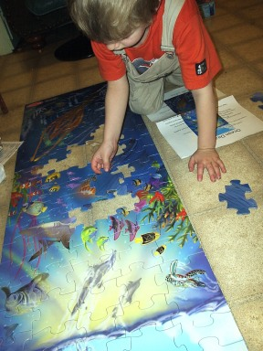 Nathan puts puzzle together